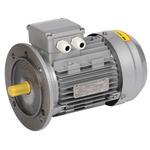 Электродвигатель трехфазный АИР 63B2 380В 0.55кВт 3000об/мин 3081 DRIVE (DRV063-B2-000-5-3030)