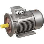 Электродвигатель трехфазный АИР 112M4 380В 5.5кВт 1500 об/мин 2081 DRIVE