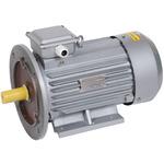 Электродвигатель трехфазный АИР 100L2 380В 5.5кВт 3000 об/мин 2081 DRIVE