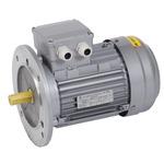 Электродвигатель трехфазный АИР 71B4 380В 0.75кВт 1500об/мин 3081 DRIVE (DRV071-B4-000-7-1530)