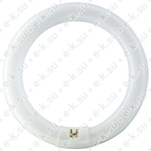 Лампа люминесцентная кольцевая ЛЛ 22Вт TLE 22/54-765 дневная (063390315)